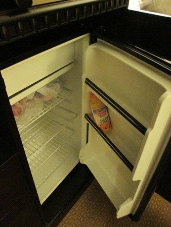 Comfort Inn & Suites Tinley Park IL: large fridge