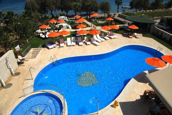 Orcey Hotel: HAVUZ