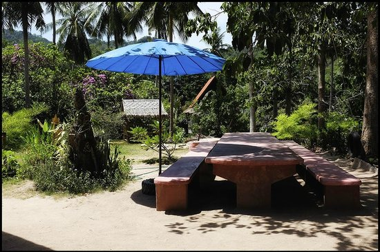 Grounded Koh Tao's Wellbeing Center: A nice place to gather