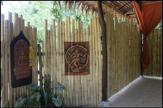 Grounded Koh Tao's Wellbeing Center: Bamboo