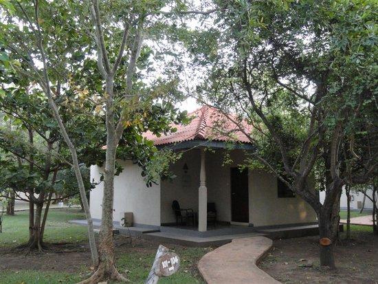 Kassapa Lions Rock: Individual rooms