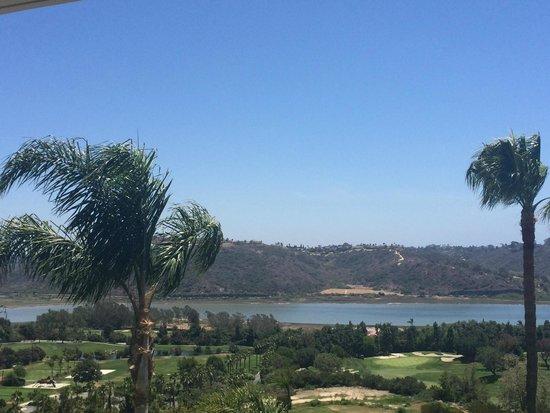 Park Hyatt Aviara Resort: View