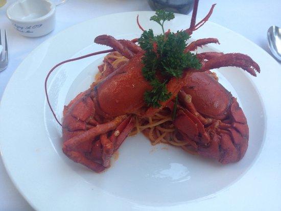Serafina: Baby lobster
