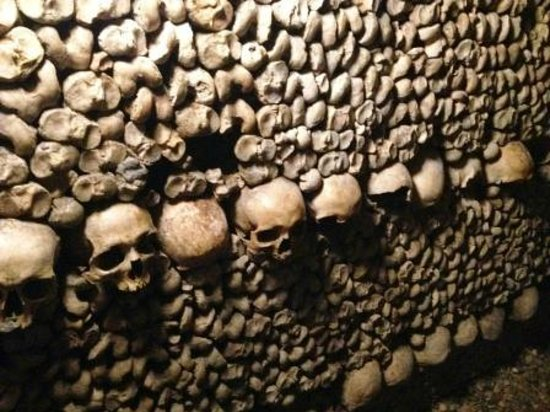 The Catacombs: Line of skulls