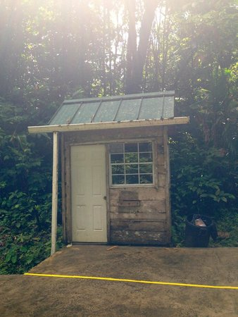 St. Lucia Rain Forest: At the top, someone works in this hut!