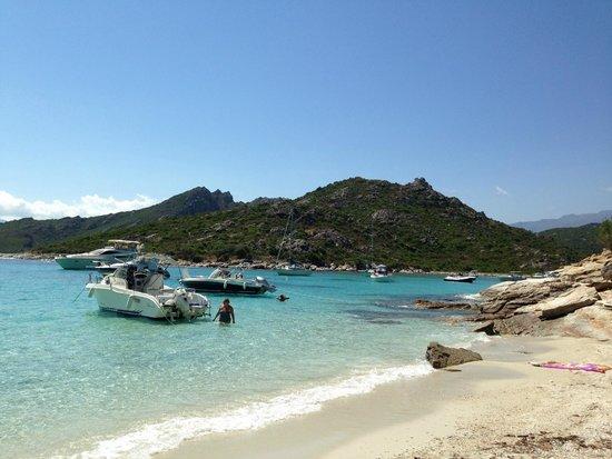 Shaka Sailing : the beach in Les Agriates
