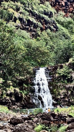 Waimea Valley : Cascade