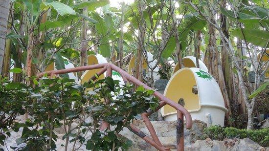 100 Egg Theme Park : Mud bath in egg room near by banana trees