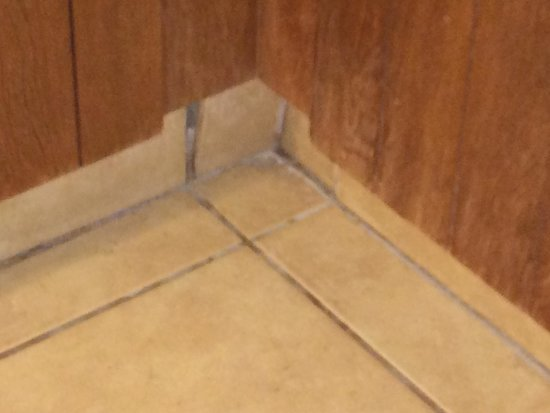 MCM Elegante Lodge & Resort: Broken dirty tile