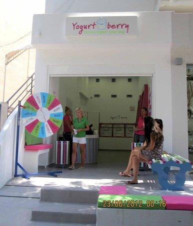 Yogurt Berry: Take your shot on the spinning wheel!!