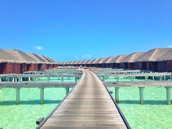 LUX* South Ari Atoll: Villa sur l'eau côté Ouest
