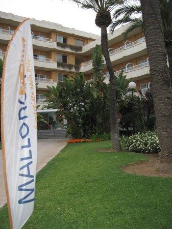 Hotel JS Alcudi-Mar: Отель. Центральный вход