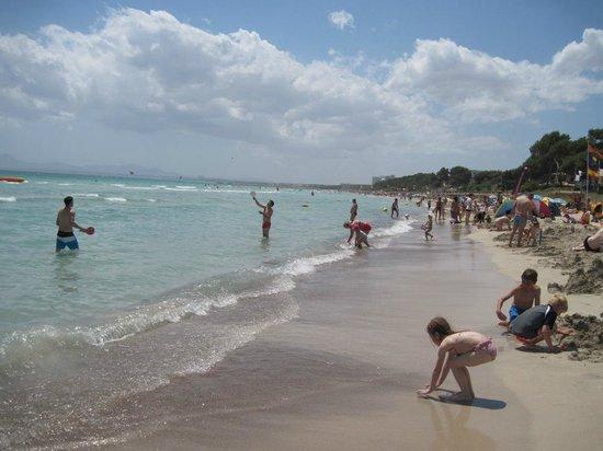 Playa de Muro: Пляж во всей красе