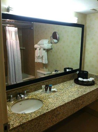 Crowne Plaza Hotel Madison: More bathroom views