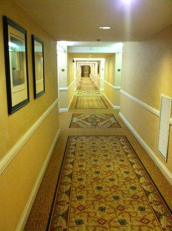 Crowne Plaza Hotel Madison : Hallway to rooms
