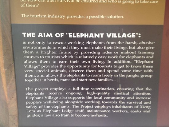 Elephant Village Sanctuary Day Trips: Stated aim, but baby elephant destined to log because he's male??