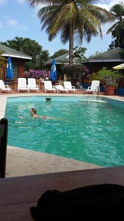 Shepherd's Inn: Pool area
