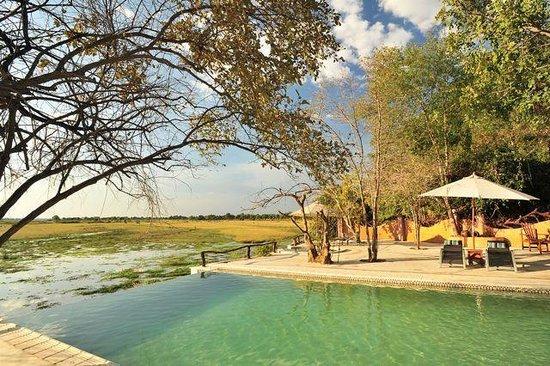 Kafunta River Lodge: Infinity pool