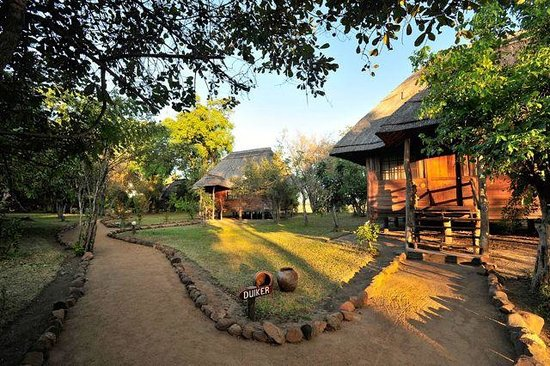 Kafunta River Lodge: Chalets in the lodge grounds