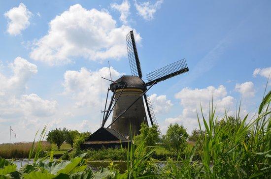 Réseau de moulins de Kinderdijk-Elshout : From a boat-trip
