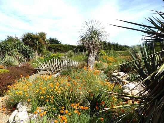 East Ruston Old Vicarage Garden: Mediterranean Garden