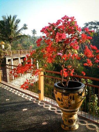 Villa Selat : stunning views overlooking the lush forest