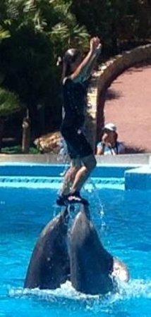 Zoomarine Algarve : Trainers were amazing
