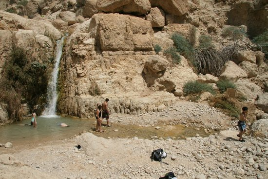 En Gedi Nature Reserve: Springs to cool off in