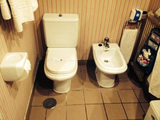 Hotel Rosamar : toilet