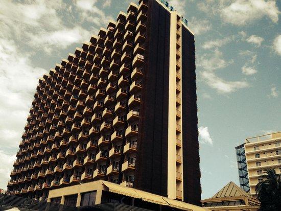 Hotel Rosamar : hotel