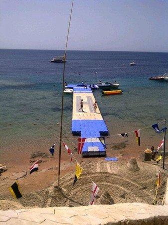 Hilton Sharks Bay Resort: Beach & the jetty