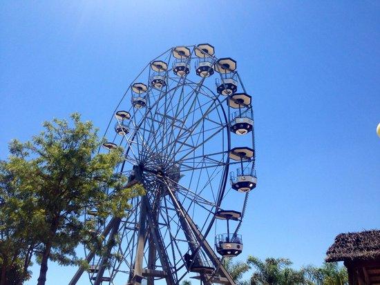 Zoomarine Algarve : Rides