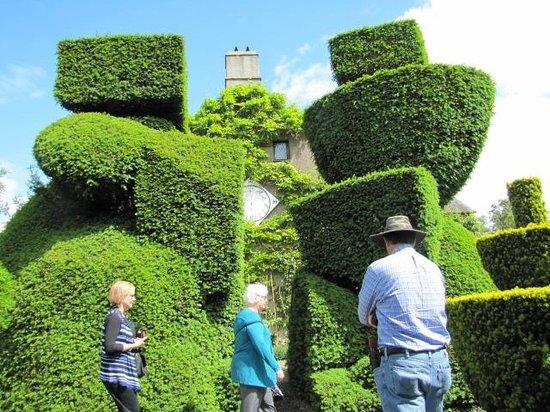 Kendal, UK: Topiary