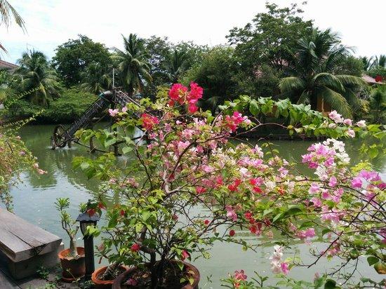 Baan Thai House : Garden