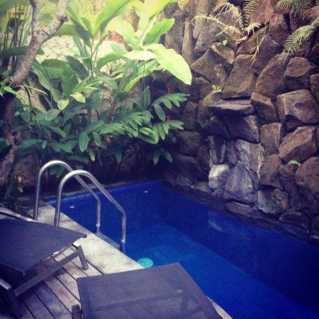 The Dipan Resort Petitenget: Private pool