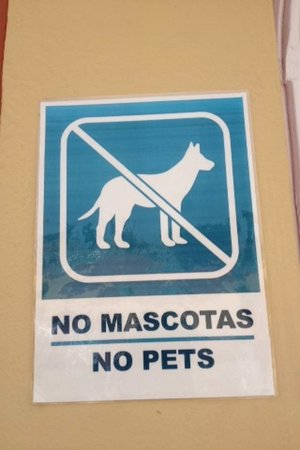 Laguna Park 2: Signs around the hotel, seen about 6 dogs.