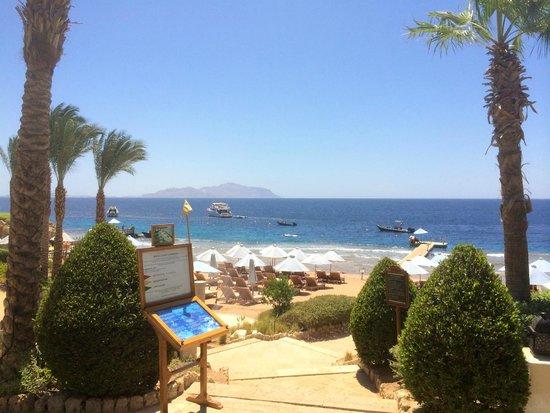 Four Seasons Resort Sharm El Sheikh: Beach and Snorkelling