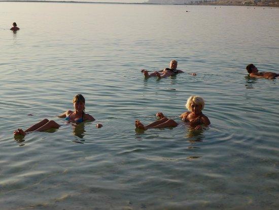 Dead Sea : Таба мертвое море