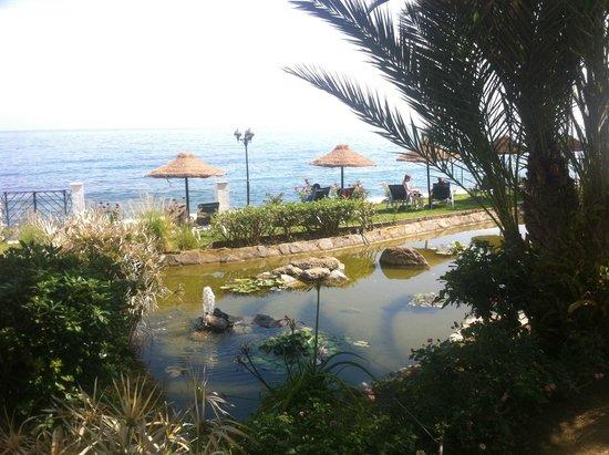 THB Torrequebrada Hotel: Zona de jardines