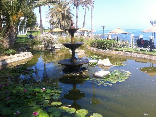 THB Torrequebrada Hotel: estanque en los jardines