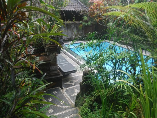 Gustis Garden Bungalows: Pool