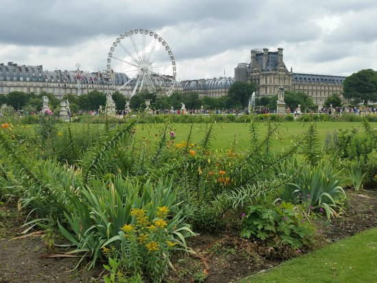 les jardins des tuileries in the winter picture of jardin des tuileries paris tripadvisor. Black Bedroom Furniture Sets. Home Design Ideas