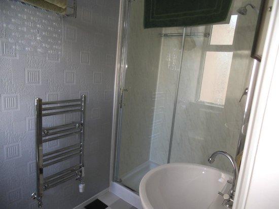Tregarthen Guesthouse: part of an  en-suite in room 4.