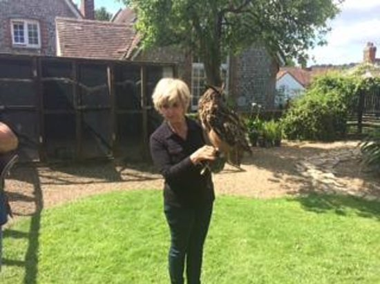 West Sussex Falconry: Sally & ED