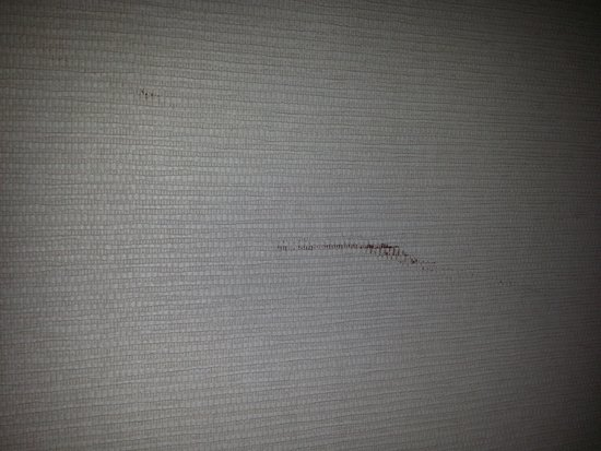 Le Meridien Singapore, Sentosa: Stained wall