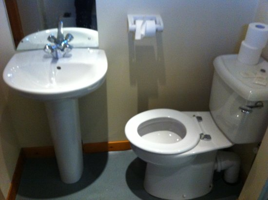 Winston Guest House: poor toilet