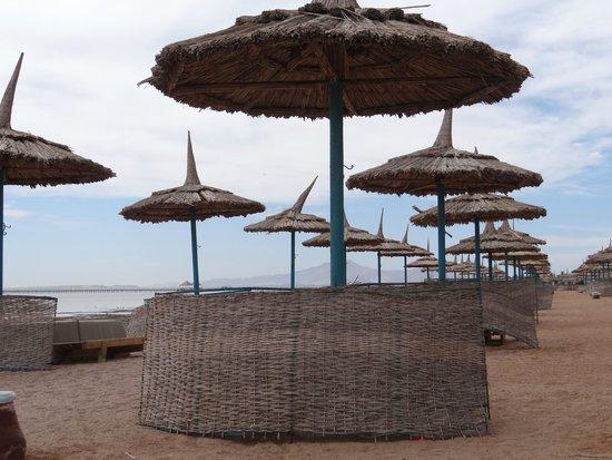 Tropicana Azure Club: Plaża