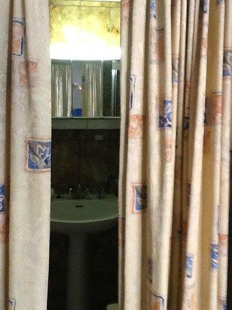 Condo Gardens Leuven: Curtains at bathroom entrance