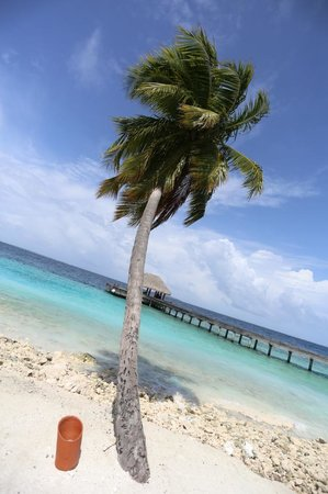 Dusit Thani Maldives: pic2