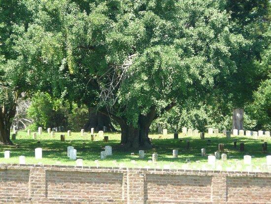 Vicksburg National Cemetery: Silent witness